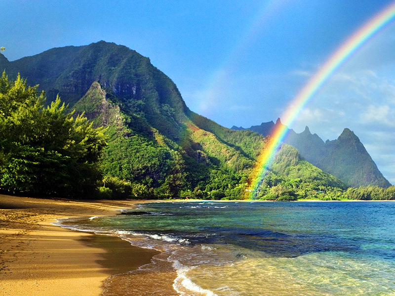 Aloha Biomedical - Medical Equipment Maintenance and Field Service in Hawaii